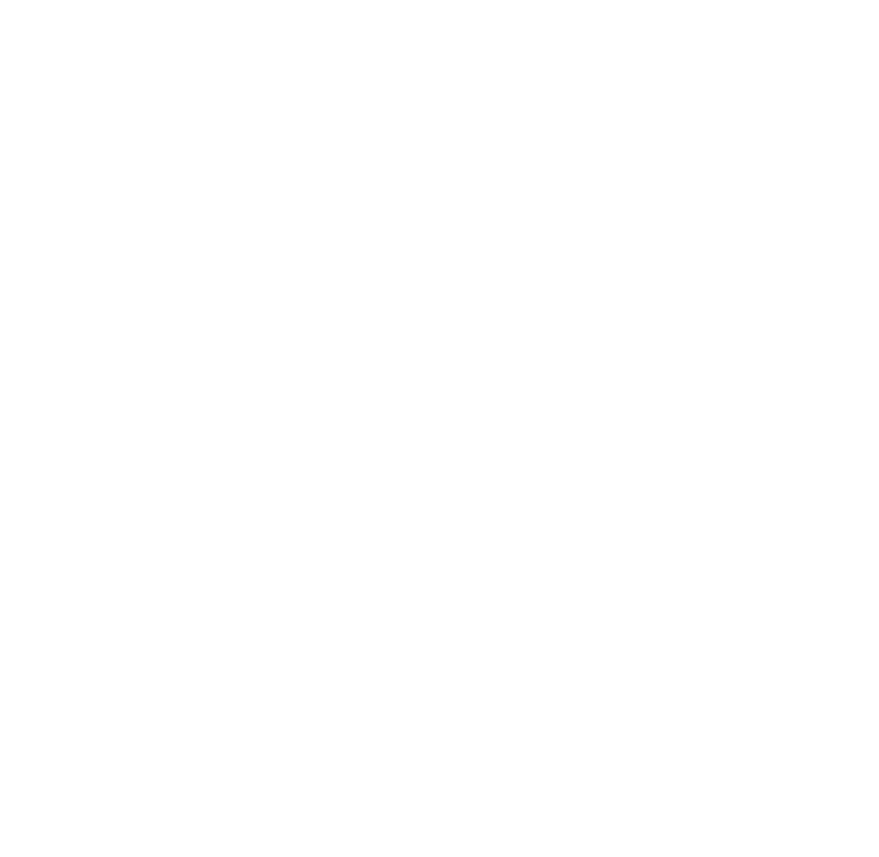 Leonin - Mini logo - Blanc